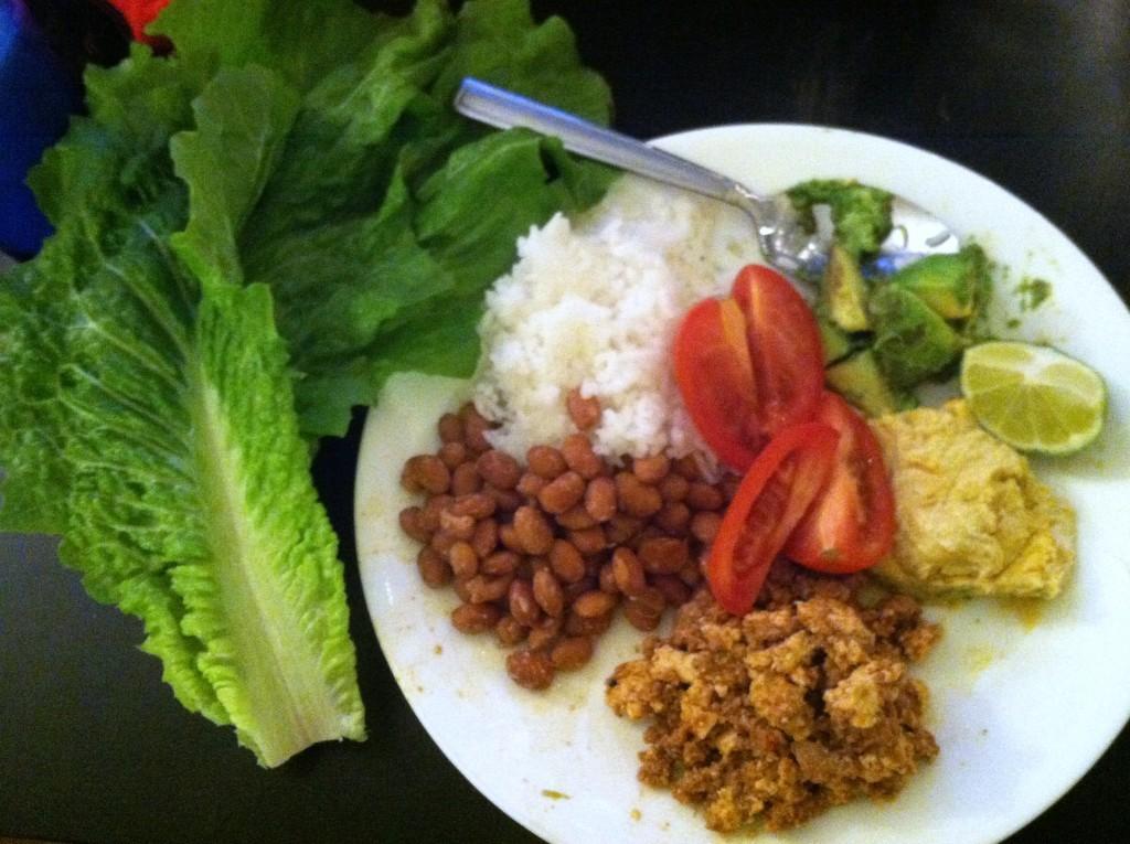 Tofu Sofritas Lettuce Wraps