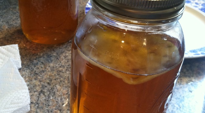 Homemade Kombucha Part 2