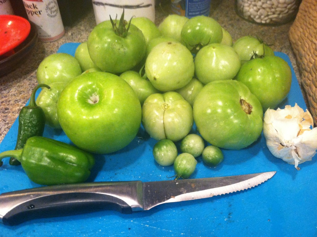 Green tomato salsa ingredients
