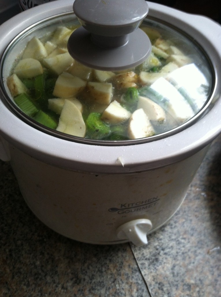 Spring soup in the crock pot