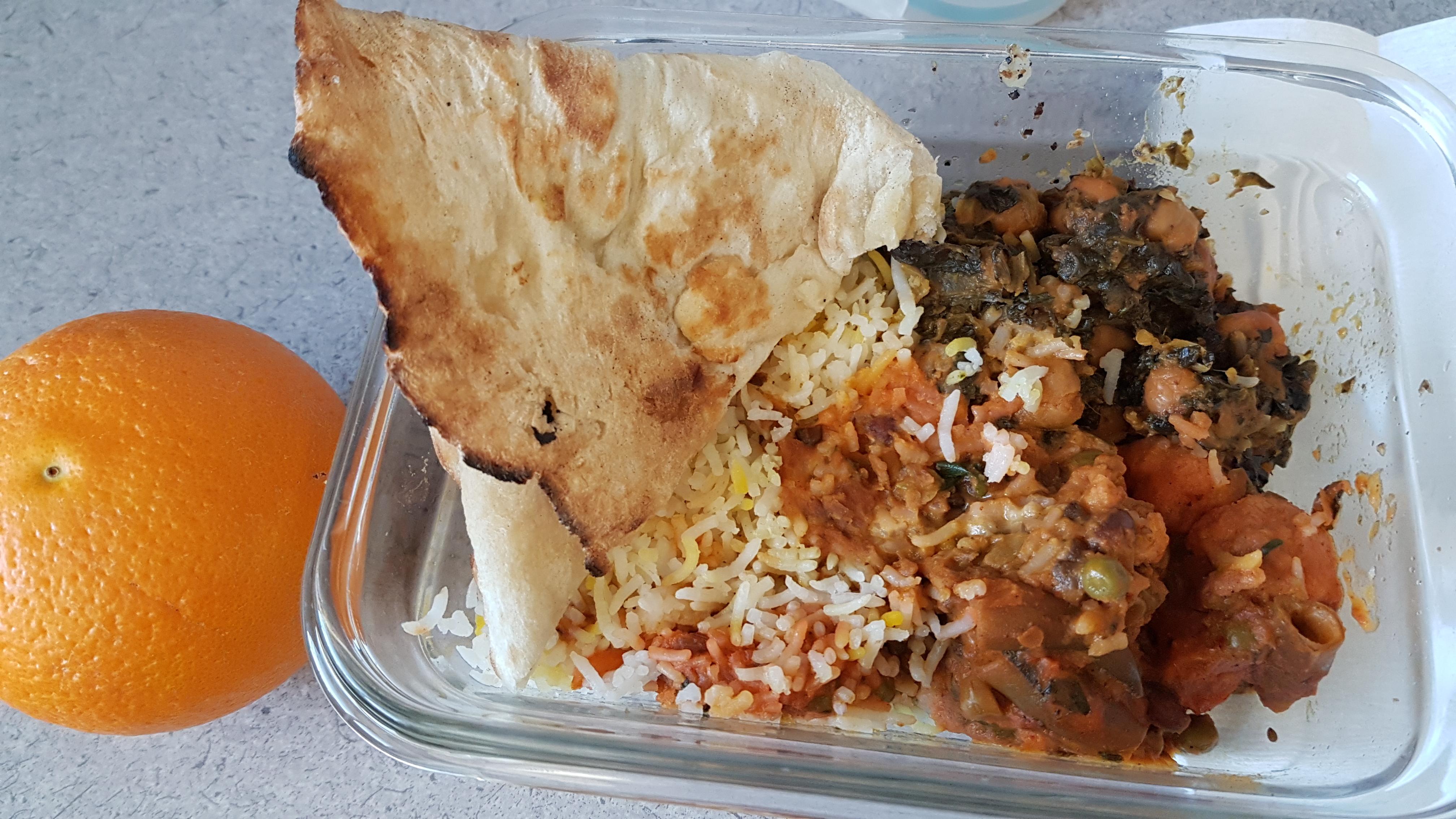 leftover Sitar 1